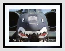 Military Air Plane Fighter Jet Thunderbolt Naso PISTOLA SQUALO incorniciato stampa b12x3596