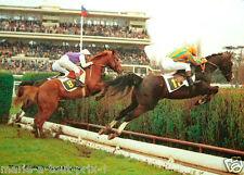 CARTE postale CPA publicitaire PMU Cheval d'Auteuil 2 course de chevaux RARE !