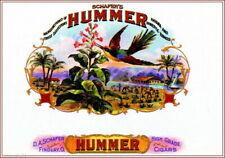 95052 Hummer Hummingbird Bird Smoke Cigar Box Inner Decor WALL PRINT POSTER FR
