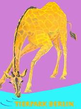 96279 Berlin Germany German Tierpark Zoo Giraffe Decor WALL PRINT POSTER DE