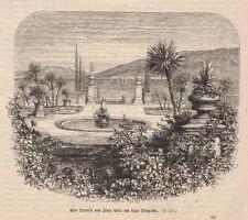 1886 Isolabella xilografia