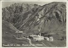 nitida perfetta spedita bella cartolina di trepalle provincia di sondrio 1953