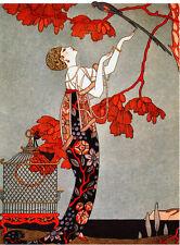 Quality POSTER.Woman catching an exotic bird.Interior Design art Nouveau.v640