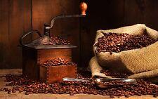 5lbs Mexican El Mezcal Micro Lot Coffee Beans Fresh Medium Roast Coffee