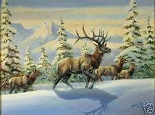 Elk Mountains Winter Snow Giclee Print Lowell Davis '72