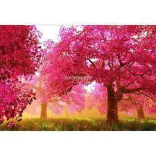Wandaufkleber deko : Bäume Herbst- 1622