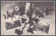 PAVIA SALICE TERME 29 SALUTI da... VEDUTINE Edera Viole Cartolina viaggiata 1913