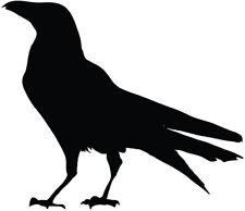 Black Bird silhouette vinyl decal sticker raven crow birds