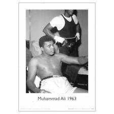 Muhammad Ali Fine Art Print Poster. Boxing Sport Legend Cassius Clay