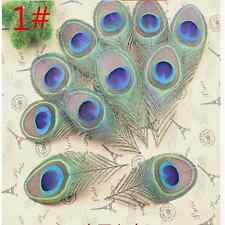 Wholesale!10-200pcs 8-12 cm feathers peacock eye decoration