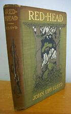 RED HEAD by John Uri Lloyd with Illustrations by Reginald B Birch, 1903 1st Ed