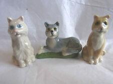 Wade Whimsie GATTI-VARI-GINGER CAT-GATTO PERSIANO-Grigio Cat