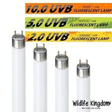 Tubo de reptil Fluorescente Glo UV Bombilla Vivero Reptiles REPTI Mascota Luz