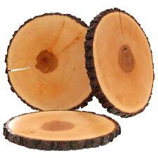 lacado DESGARRO rindenbrett CENIZA Rendondo - rissbrett PULIDO Panel de árbol