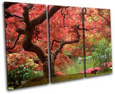 Cherry Blossom Tree Landscapes TREBLE DOEK WALL ART foto afdrukken