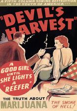 "AD82 1950's Devils Harvest Marijuana Anti Drugs Poster A3 17""x12"""