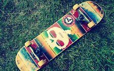 154568 Double skateboard Skateboarding Art Wall Print Poster CA