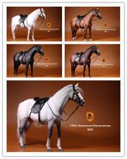 "Mr.Z 001~005 1/6 Germany Hanoverian Animal Hannover Horse Model F 12"" Figure New"