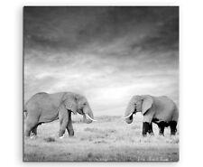 Naturfotografie –  Zwei Elefanten in der Wildnis, Kenia, Afrika auf Leinwand