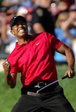 Golf  Poster - Tiger Woods