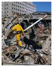 Rescue Dog 9/11 September 11th World Trade Center Silver Halide Photo - Ver 2