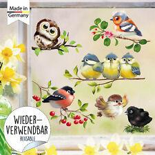 Fensterbild Frühling Ostern Vögel Vogel Set Wiederverwendbar Fensteraufkleber