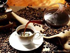 2 lbs Mexican El Mezcal Micro Lot Fresh Dark Roast Gourmet Coffee Beans