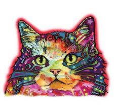 Ragamuffin Cat Shirt, Kitty, Kitten, Cat Face, Colorful T-Shirt, Small - 5X