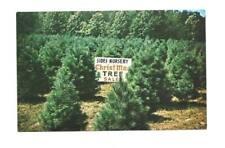 WINSTON-SALEM NC Sides Nursery Christmas Tree Farm Vtg