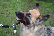 Cabezal Acolchado Collar Perro Adiestramiento Perro tirando herramienta de formación Halter se detiene
