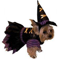 Witch Dog Costume Pet Halloween Fancy Dress