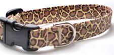 Cheetah (#81) - Shih Tzu, Boston Terrier, Westie, Beagle, Springer Spaniel