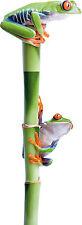 Sticker animal deux grenouilles bambou 30x11cm