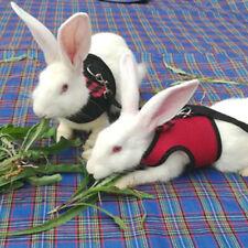 Laisse Conduire avec laisse gilet pour petit animal pour lapin
