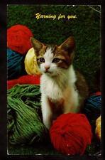 1962 vintage chrome kitten among the yarn cat postcard