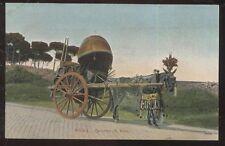 Postcard Rome, ITALY Horse Drawn Wine Barrel Cart view 1905?