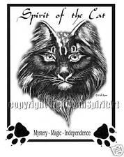 Cat Spirit Animal Guide Totem Power Kitty feline eyes mystery magic T-Shirt