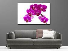 Cuadro pinturas decoración en kit Orquídea ref 8128962