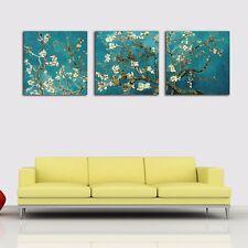 SET OF 3 Framed Canvas Prints Van Gogh Almond Blossom Wall Art Wall Decor AU DIY