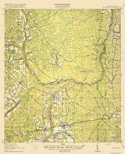 Mayport Florida Quad USGS 1918-17 x 20.94