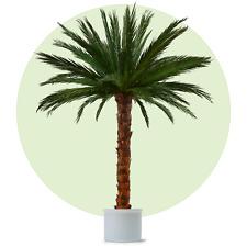 Palme Baum Deko-Blumen & künstliche Pflanzen fürs Wohnzimmer ...