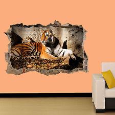 Tigre e Cucciolo Sdraiato su Roccia Sticker Decorazione Per Soggiorno Decalcomania Murale una classe