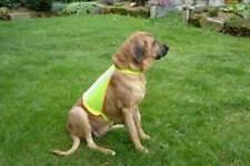 Buster Reflective Dog Vest