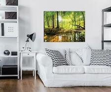 Wandbild  Leinwandbild Kunstdruck 15F0154440 Sonniger Wald