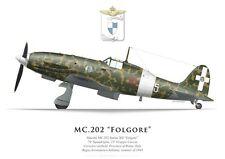 Print Macchi MC.202 Folgore, 74a Squadriglia, 23° Gruppo, 1943 (by G. Marie)