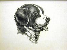 Rice SWEET NEWFOUNDLAND 1931 Dog Art Print Matted