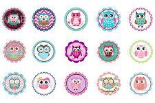 Owls Pre-Cut 1 Inch Bottle Cap Images (3 Options)