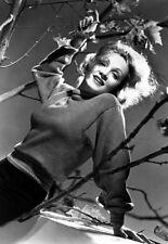 Marlene Dietrich - Movie Star Portrait Poster