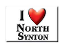 SOUVENIR UK - SCOTLAND FRIDGE MAGNET I LOVE NORTH SYNTON (SCOTTISH BORDERS)