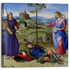 Raffaello visione di un cavaliere quadro stampa tela dipinto telaio arredo casa